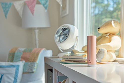Netatmo NHC-EC - Control de calidad de ambiente de tu hogar, aire interior, temperatura, humedad, sonido y CO2, Dorado Rosado, 4.5 x 4.5 x 15.5 cm