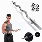 OVERTERD-47in Barbell Weight Bar Standard Z Curl Bar Home Gym Fitness Exercise Lift,with Pairs...