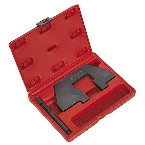 Sealey VSE118 Petrol Engine Setting/Locking Kit - fits BMW 1.6, 1.8, 1.9 SOHC M43 - Chain Drive