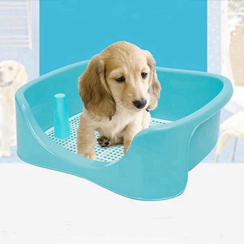 TeaQ Big Dog Toilet (großes Hunde-WC), 50x 40x 17cm, Töpfchen-Trainer für Rüden und Hündinnen mit Bodenschutz