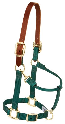 Weaver Leather Nylon Adjustable Breakaway Horse Halter, Average, Hunter Green