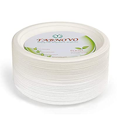 Paper Plates Heavy Duty 9 inches 100 Count Eco-friendly Disposable Dinner Plates Classic White (100 Count)