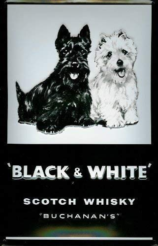 Black & White Scotch Whisky Buchanans Blechschild Schild Blech Metall Metal Tin Sign 20 x 30 cm