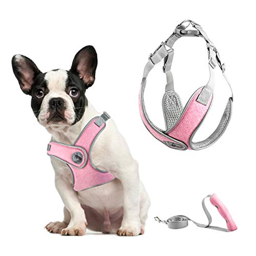 PETCARE Pet Dog Harness and Leash Set Soft Mesh Comfortable Nylon Reflective Adjustable Halter Harness Vest for Small Medium Dogs Cats Pug Life Safety Easy Walk Vest