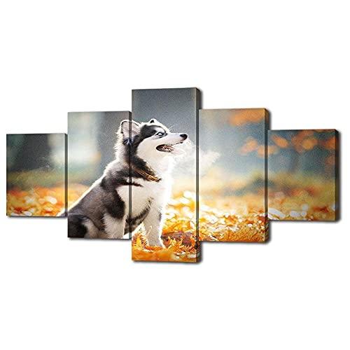 FGART Modular HD Lienzo Imagen 5 Piezas Cuadro sobre Cartel De Perros...