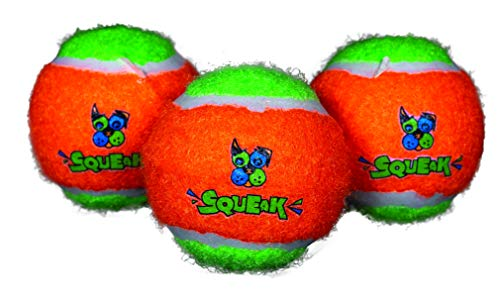 Spunky Pup Tennis Ball