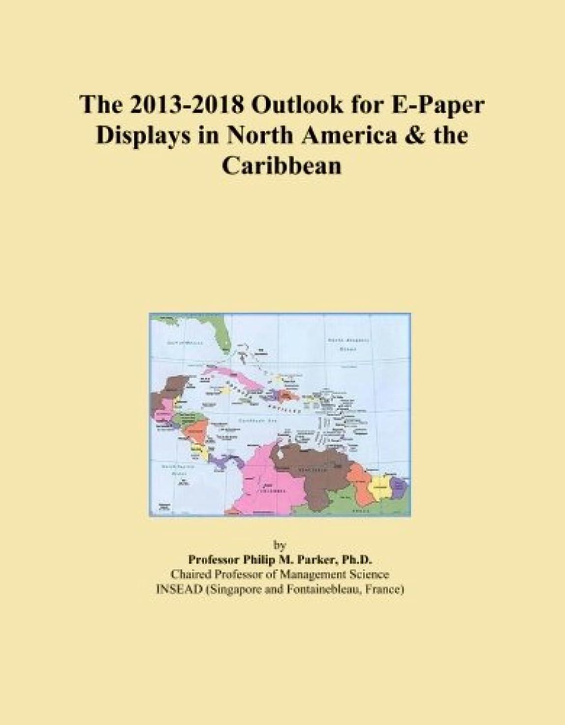 日焼けネット加入The 2013-2018 Outlook for E-Paper Displays in North America & the Caribbean