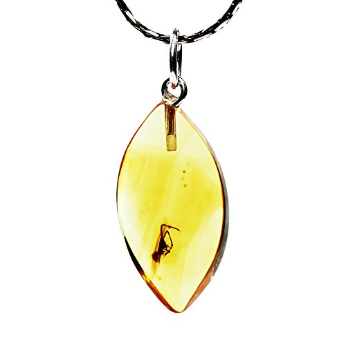Amber Paradise Ciondolo in Ambra Dorata con Insetto inclusione 740 + Splendida Confezione Regalo