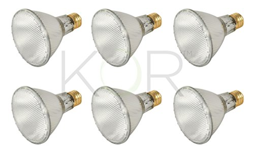 (Pack of 6) 39PAR30L/FL 120V - 39 Watt High Output (50W Replacement) PAR30 Long Neck Flood - 120 Volt Eco Halogen Light Bulbs - Dimmable - Indoor / Outdoor Use