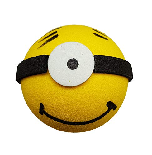 Access All Areas Minion Aerial Topper Car Locator Finder Superhero Father's Day Dad Boy Birthday Gift
