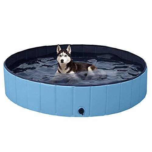 YAHEETECH Blue Foldable Hard Plastic Dog Pet Bath Swimming Pool Collapsible Dog Pet Pool Bathing Tub Pool for Pets Dogs Cats-55 x 12 inch, XL