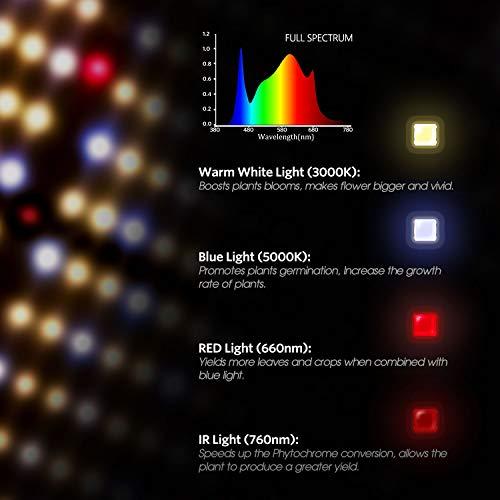 Spider Farmer SF-2000 LED Grow Light