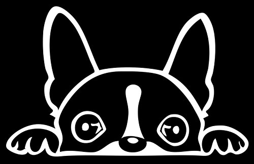 Boston Terrier Peeking Over 6' White Vinyl Car Truck Decal Sticker Dogs Rescue Adopt Animals Cute Funny Adorable