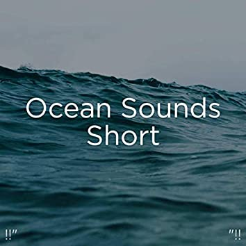"!!"" Ocean Sounds Short ""!!"