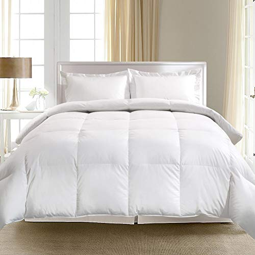 Blue Ridge Home Fashions 1000 Thread Count Egyptian Cotton European Goose Down Comforter, White, King