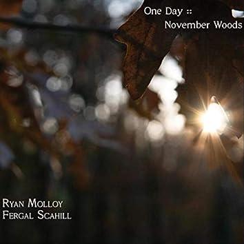 One Day: November Woods