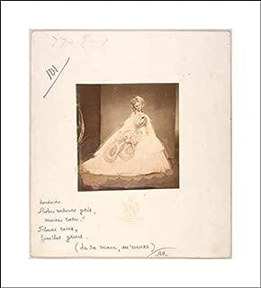 Pierre-Louis Pierson - 16x18 Art Print by Museum Prints - La Bisi. Boudoir, Robe Velour gris, Moire Rose, Fleurs Roses, feuilles grises (de sa mai, au Revers.)