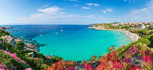 Rena Bianca Beach, North Sardinia Island, Italy - Wildflowers on Coast A-9012356 (12x18 SIGNED Print Master Art Print - Wall Decor Poster)