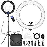 Ring Light with Stand and Phone Holder for iPad, Pixel 19inch LED Selfie Circle Light with Microphone, 60W Bi-Color Ring Lighting for Photography, Makeup, YouTube, Facebook Live, Twitch and Tiktok