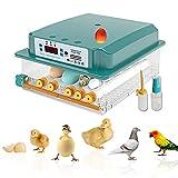 Incubateur Numérique d'oeufs Éclosoir Automatique à Usage Domestique 16 œufs,Couveuse Incubateur œufs...