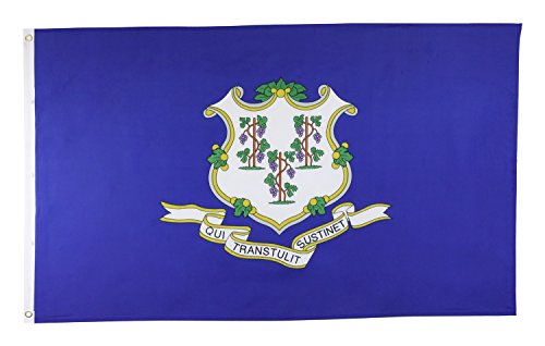 Shop72 US Connecticut State Flags - Connecticut Flag - 3x5' Flag from Sturdy 100D Polyester - Canvas Header Brass Grommets Double Stitched from Wind S
