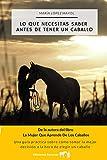Lo que necesitas saber antes de tener un caballo: Una guía práctica sobre cómo tomar la mejor decisión a la hora de elegir un caballo