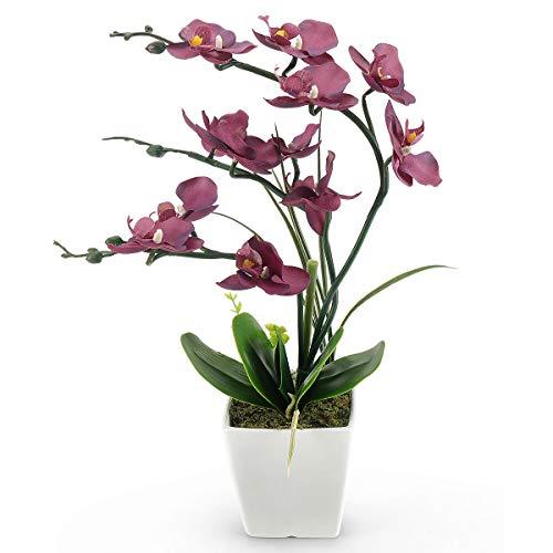 RERXN Decorativi Real Touch Orchidea Finta Bonsai Fiori Artificiali Fiori in Vaso di Ceramica Phalaenopsis Composizione Floreale per la Decorazione Domestica (Purple 01)