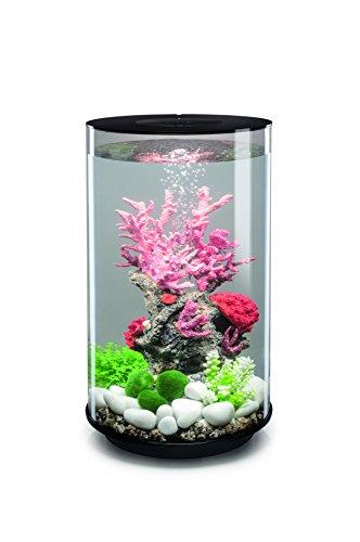 OASE biOrb TUBE 30 LED Aquarium, 30 Liter - Aquarien Komplett-Set mit LED Beleuchtung und patentiertem Filter-System, Acryl-Becken in Schwarz