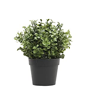 ECOOPTS Artificial Topiaries Pots Plants Mini Plant Potted Plastic in Pots Fake Lifelike Buxus Flower Green Decoare for Home Decore Indoor Outdoor Decoration