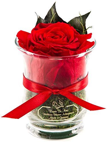 Rosen-Te-Amo – 1 Premium haltbare rote Rose in der Vase mit echten Bindegrün; Konservierte Rose im Glas: Blumenstrauß 3 Jahre haltbar ohne Wasser