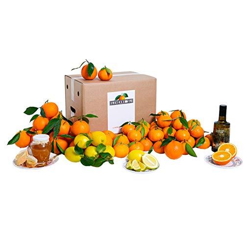 Cesta de Navidad⎜15 KG ⎜Selección de Productos de Huerta Valenciana ⎜Regalo ⎜Naranjas, mandarinas y limones