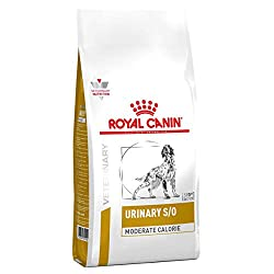 Lightweight foods for dogs with urinary disorders related to strovites and calcium oxalates Royal Canin Urinary moderate calorie, by acidification of urine, is unfavorable to bacterial development and precipitation of struvites. The magnesium level i...