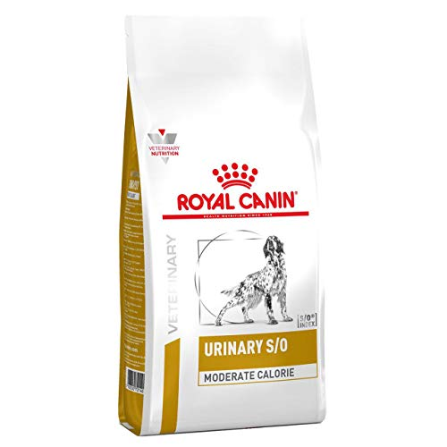 ROYAL CANIN C-111645 Diet Urin Mode Ucm20-1.5 Kg