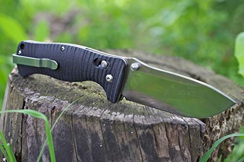 GANZO Firebird F720 Pocket Folding Bowie Knife 440C Stainless Steel Blade G-10 Handle with Clip Hunting Fishing Camping Outdoor EDC Knife (Balck) with Gift - Multi-Tool Card 8-in-1
