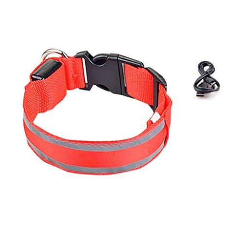 KHFFH Hundeleine Pet, Collare, USB en accu voor het bijvullen met dubbele reflector voor huisdieren