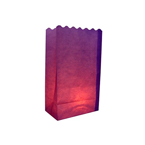 Quasimoon PaperLanternStore.com Purple Paper Luminaries/Luminary Lantern Bags Path Lighting (10 Pack)