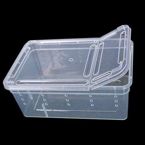 junyeYJY _Reptil cría anfibio Caja de plástico transparente Insectos Reptiles Transporte Cría...