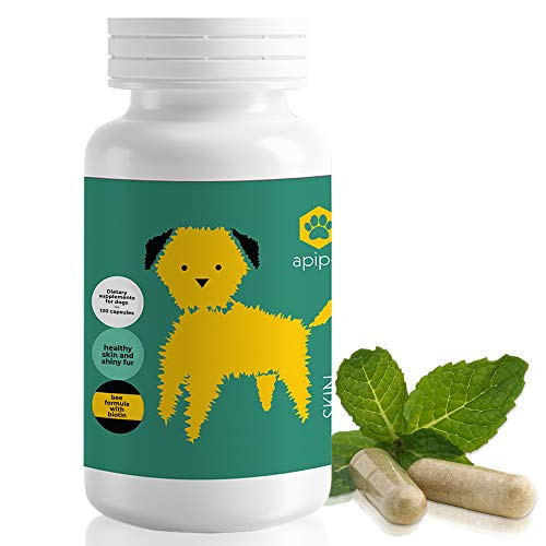 ApiPet Skin - Bee Pollen, Propolis & Biotin Supplement for Dogs - Supports Healthy Skin & Soft Shiny Coats - Itchy Allergy Relief - Vitamin Rich Pet Formula for Immune System Support - 120 Capsules