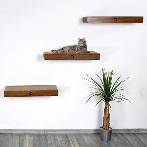 CanadianCat Company ® | Catwalk aus 3er Kratzbrett-Set mit verdeckter Wandbefestigung Cloud | walnuss | ca. 70 x 30 x 8 cm Kletterwand Katze Catwalk
