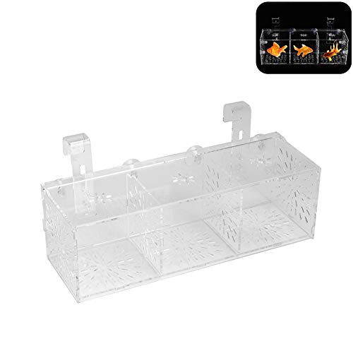 Pssopp Aquarium Zucht Isolation Box Züchter Isolation Divider Brutkasten Acryl Transparent Aquarium Brut Inkubator Halter(30CM*10CM*10CM)