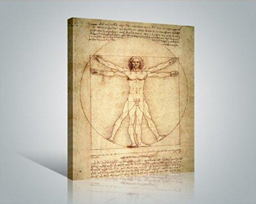 1art1 Leonardo Da Vinci - El Hombre De Vitruvio, 1490 Aprox. Cuadro, Lienzo Montado sobre Bastidor (50 x 40cm)