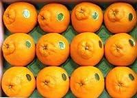 [産直宮崎県] 柑橘類 【特甘】 デコポン(しらぬい) 赤秀 10~12玉化粧箱入り。