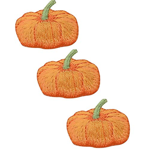 Pumpkin Patch Halloween Thanksgiving Gourd Sew Iron on Embroidered Applique Patches Logo Emblem