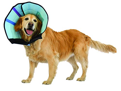 Calm Paws Dog Caring Collar with Calming, Medium