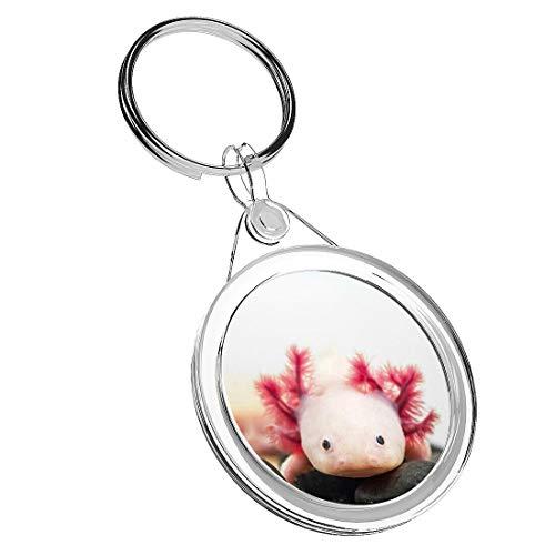 1 x Axolotl Acquario Drago Pesce – Portachiavi IR02 Mum Papà regalo di compleanno #3066