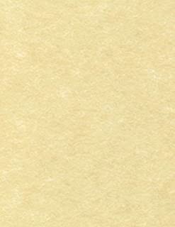 8 1/2 x 11 Paper - Gold Parchment (50 Qty) | Perfect for Holiday crafting, invitations, scrapbooking and so much more! | 81211-P-41-50