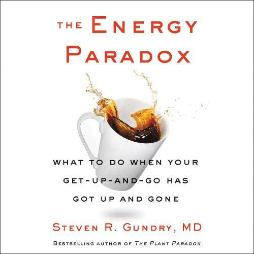 The Energy Paradox cover art