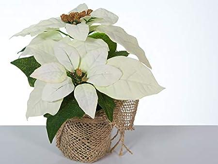 Bambelaa Bianco 3 Pieces Fiori Artificiali di Natale Fiore Artificiale Stella di Natale Poinsettia Ornamenti Fiori Finti per Interno Decorazioni per Natale Ufficio