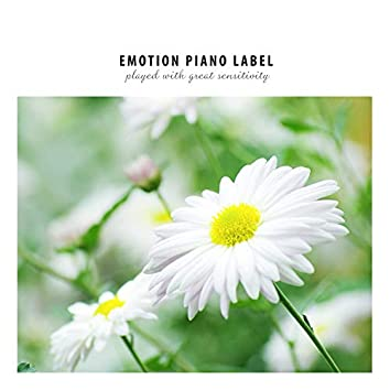 Beautiful New Age Piano Collection When You Need Comfort