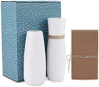 D'vine Dev White Ceramic Vases Table Vase Set of 2 - Snow White Finishing - Gift Box Packaged